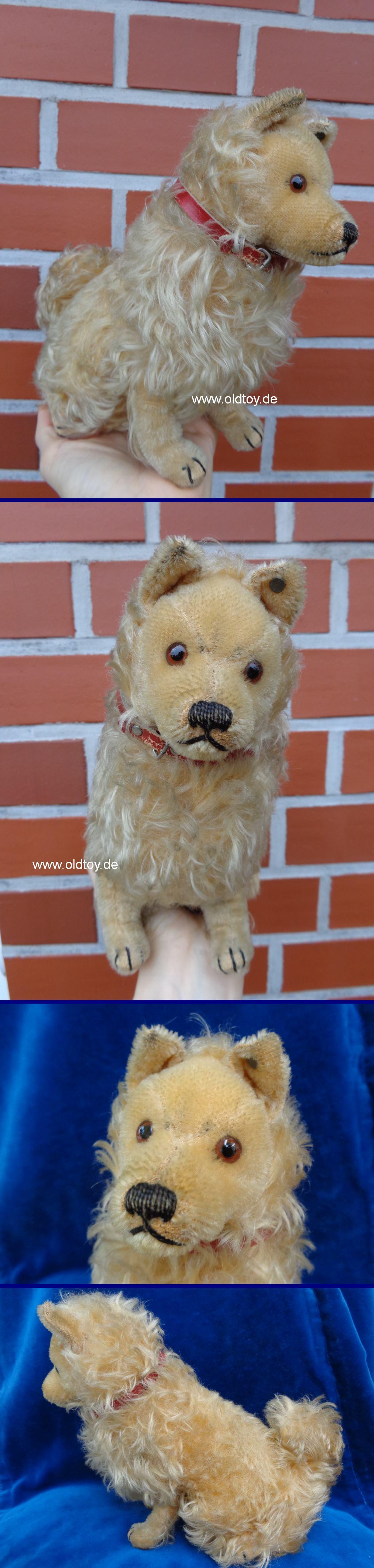 Rare Vintage Antique Steiff Hand Puppet Spaniel Dog Raised Script Silver Button